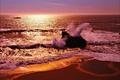 Картинка Берег, волны, море