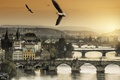 Картинка закат, Prague, птицы
