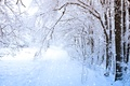 Картинка снег, зима, деревья, Trees, Winter, Snow
