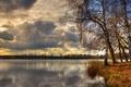Картинка деревья, озеро, облака, березы