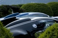 Картинка Bugatti, авто, кусты