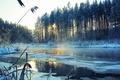 Картинка река, зима, снег, пейзаж, деревья