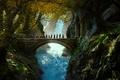 Картинка Mirkwood, Лихолесье, Хоббит: Пустошь Смауга, or There and Back Again, Мирквуд, The Hobbit: The Desolation ...