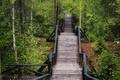 Картинка bridge, осень, Autumn, мост, forest, fall, лес