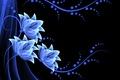 Картинка цветы, vector, flowers, background, neon, неоновые